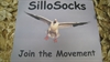 Picture of SilloSocks Trailer Sticker