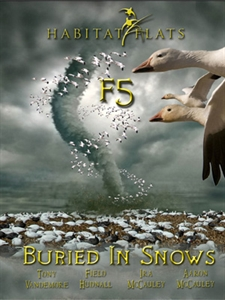 Picture of F5 BURIED IN SNOWS DVD