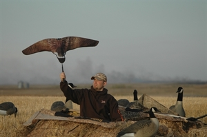 Picture of Canada Goose Super Flag (AV71541) by Avery Outdoors Greenhead Gear GHG