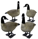 Picture of Bigfoot Bull Canada Goose Decoys 4 pack