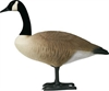 Picture of **FREE SHIPPING** Single Bigfoot Canada Goose Decoy