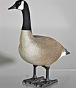 Picture of Bigfoot Bull Sentry Canada Goose Decoy