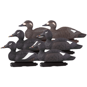 Picture of Commercial Grade White Winged Scoters AV74022 Foam Filled by Greenhead Gear GHG Avery Outdoors