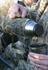 Picture of Neobottle Vacuum Bottle 1000 ML (AV96019) by Avery Outdoors Greenhead Gear GHG