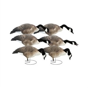 Picture of **FREE SHIPPING** FFD Elite Full Body Honker Feeder 6 pk with  Bag (AV71575) by Greenhead Gear GHG Avery Outdoors