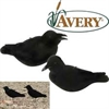 Picture of FFD Crow Decoy Aggressive Caller (AV72001) by Greenhead Gear GHG Avery Outdoors