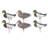 Picture of Pro-Grade Full Body January Mallard Active 6-Pack (AV72226) by Greenhead Gear GHG Avery Outdoors
