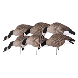 Picture of **FREE SHIPPING** Tim Newbold FFD Lesser Canada Goose Decoys - Feeder 6pk w/Bag AV72306 by Greenhead Gear GHG Avery Outdoors