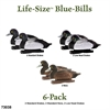 Picture of **SALE** Life-Size Bluebill Duck Decoys 6 pk (AV73038) by Avery Greenhead Gear GHG