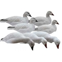 Picture for category SNOW GOOSE SHELL DECOYS