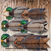 Picture of **SALE** Top Flight Back Water Mallard Duck Decoys 6pk  by Avian X Decoys
