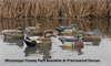 Picture of **SALE** Top Flight Mississippi Flyway Pack Duck Decoys 6pk (Z8091) by Avian X Decoys Zink Calls