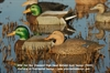 "Picture of  **SALE** ""Hot Buy"" Standard Mallard Duck Decoys 1dz. (AV70001) by Greenhead Gear GHG Avery Outdoors"