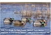 Picture of **FREE SHIPPING** Pro-Grade Surface Feeder Mallard Duck Decoys 6 Pack by Greenhead Gear GHG Avery Outdoors