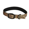 Picture of Standard Collars by Avery Sporting Dogs