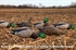 Picture of Polycarbonate Power Hen PH-2 Double Reed Mallard Duck Call by Zink Calls