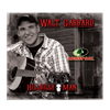 "Picture of  Walt Gabbard's CD - ""Hillbilly Man"""