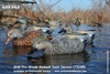 Picture of **FREE SHIPPING** Pro-Grade Gadwall Duck Decoys 6 pack by Greenhead Gear