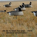 Picture for category Canada Goose Shells