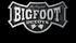Picture of Bigfoot Mallard Duck Floaters  6 pk (BF213686)