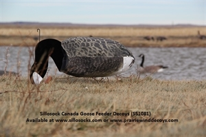 Picture of **SALE** Canada Goose Windsock Decoys 1dz Feeders  (SS1081) by Sillosock Decoys