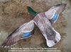 Picture of **SALE** Drake Mallard Flapping Flyer (SS1302FF) by Sillosocks Decoys