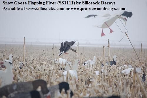 Prairiewind Decoys Sale Specklebelly Goose Flapping