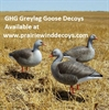 Picture of **SALE**  Pro Grade Full Body Greylag Goose Decoys Harvester 6pk (AV72403) by Greenhead Gear GHG Avery Outdoors