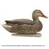 Picture of Top Flight Fusion Mallard Duck Decoys 6pk by Avian X Decoys