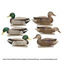 Picture of Fusion Mallard Floater 6pk - AVX8076