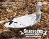 Picture of *SALE* 3-D Sentry Snow Goose Decoys by Sillosock Decoys