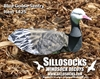 Picture of *SALE* 3-D Sentry Blue Goose Decoys by Sillosock Decoys