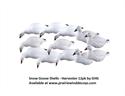 Picture of Snow Goose Shell Harvester 12 pk - AV71065