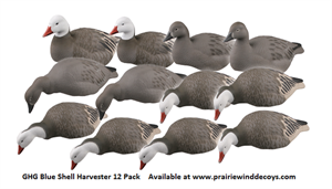 Picture of  **FREE SHIPPING** Pro-Grade BLUE Goose Shell Decoys 12pk by Greenhead Gear GHG