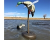 Picture of ***FREE SHIPPING***Spinning Wing  Decoy Buoy by Banded Gear