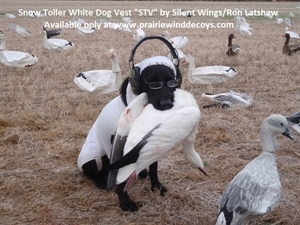 "Picture of **SALE** Snow Toller White Dog Vest ""STV"" by Silent Wings/Ron Latshaw"