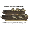 Picture of **SALE** Pro-Grade FFD Elite Black Duck Decoys 6pk by Greenhead Gear GHG Avery Outdoors