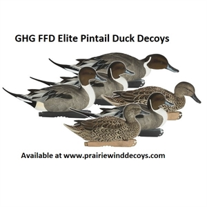 Picture of **SALE** Pro-Grade FFD Elite Pintail Duck Decoys 6pk by Greenhead Gear GHG Avery Outdoors