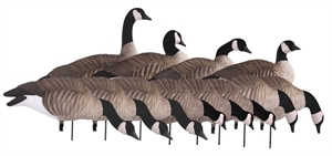 Picture of **FREE SHIPPING** Tim Newbold FFD Lesser Canada Goose Decoys - Harvester 12pk w/Bag  by Greenhead Gear GHG Avery Outdoors