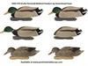 Picture of **FREE SHIPPING** Pro-Grade FFD Elite Mallard Feeder Duck Decoys 6pk by Greenhead Gear GHG Avery Outdoors