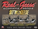 Picture of 5 boxes Sit'n Geese Canadas 6pks- RG-WF905PS-5boxes