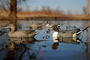 Picture of Life-Size Pintail 6pk (Drakes only) by Greenhead Gear GHG Avery Outdoors