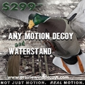 Picture of Drake Mallard Clone/Waterstand Combo