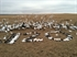 Picture of Snows On The Prairie Audio Ring Tones