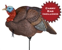 Picture for category Dakota Turkeys