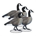 Picture for category Fullbody Goose