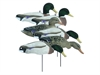 Picture of **FREE SHIPPING** Magnum Full Form Mallard Shells, Variety Pk, Flocked Heads 6pk by Higdon Decoys