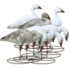 Picture of **FREE SHIPPING** Snow Goose Full Body Variety 8 pk  by Higdon Decoys