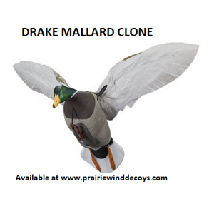 Picture of Mallard Clone Power Flapper by Clone Decoys