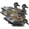 Picture of **FREE SHIPPING** Standard Gadwall Duck Decoys 6pk by Higdon Decoys
